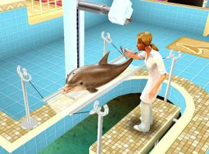 Pet Vet 3D: Animal Hospital Down Under